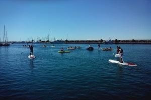 kayak y paddle surf web